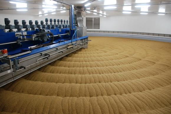 Соглашение между Carlsberg и ярославскими сельхозпроизводителями пивоваренного ячменя