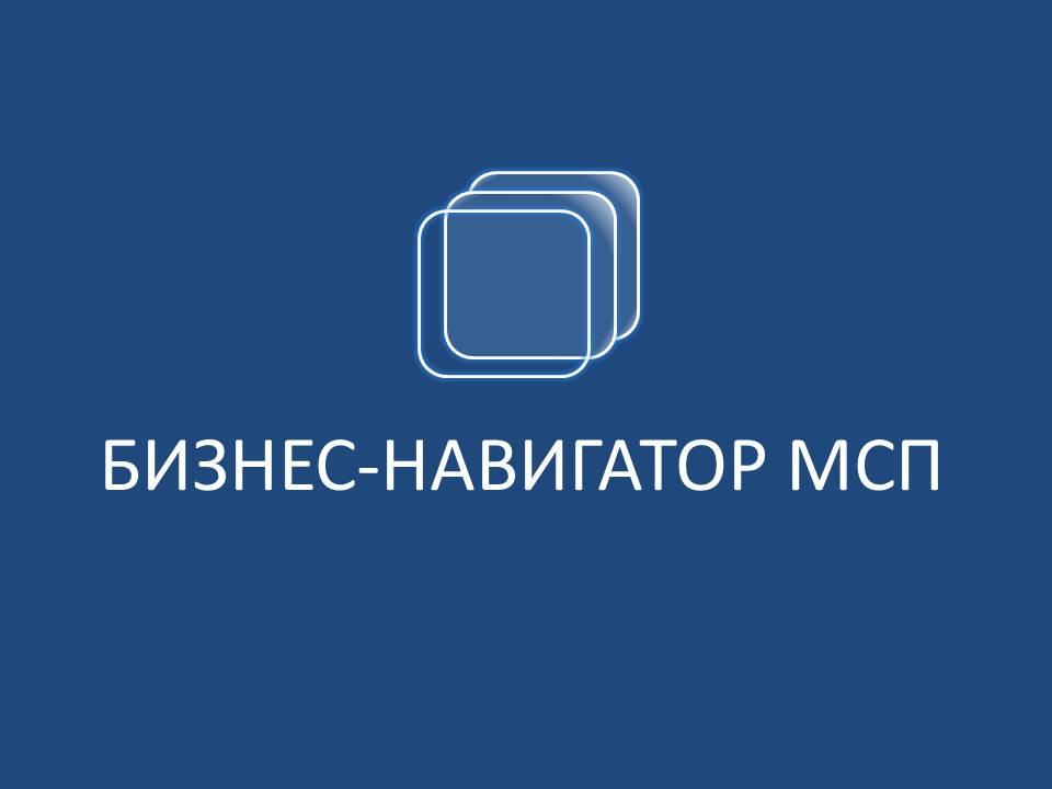 бизнес навигатор МСП
